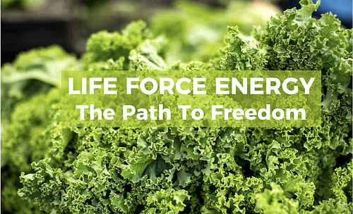 Life Force Energy – the path to freedom